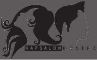logo desire-trans-klein